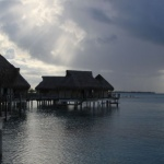 IMG_9404_light_tahiti