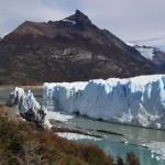 IMG_1825_light_argentine