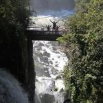 IMG_3014_light_argentine Iguazu
