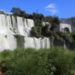 IMG_3078_light_argentine Iguazu