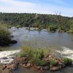 IMG_3151_light_argentine Iguazu