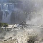 IMG_3375_light_argentine Iguazu