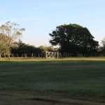 IMG_3582_light_argentine estancia