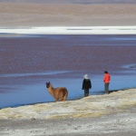 IMG_6124_light_bolivie salar