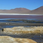 IMG_6126_light_bolivie salar