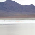 IMG_6260_light_bolivie salar