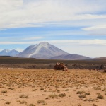 IMG_6268_light_bolivie salar