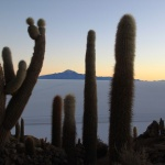 IMG_6422_light_bolivie salar
