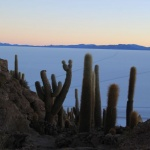 IMG_6427_light_bolivie salar