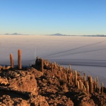 IMG_6451_light_bolivie salar